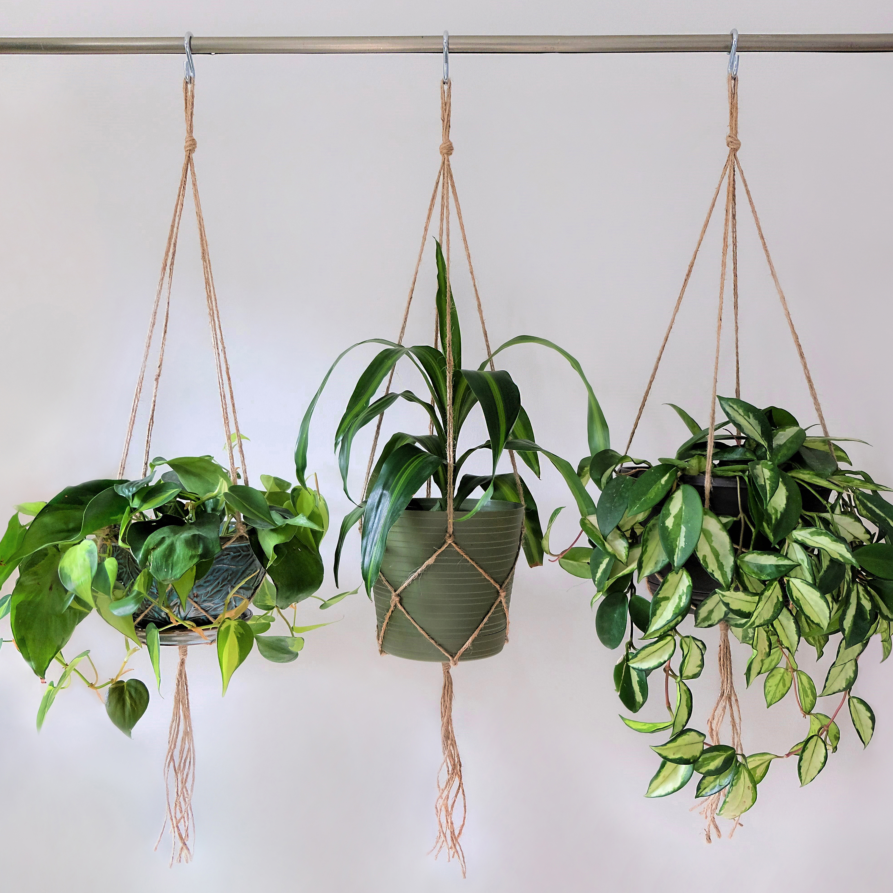 Make a Macramé Hanging Planter Workshop