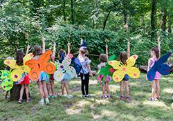 Virtual Fairy Camp