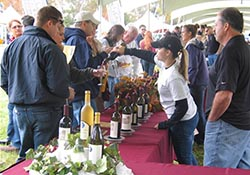 Grand Harvest Wine Festival at Fosterfields
