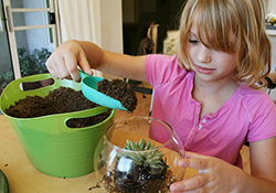Home School Days: Creating Plants!