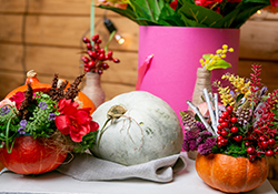 Make & Take a Gourdgeous Thanksgiving Centerpiece
