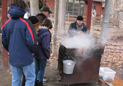 Maple Sugaring Demonstrations