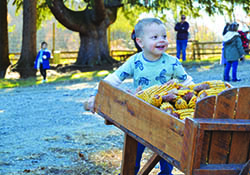 Thanksgiving Harvest Home & Armistice Observance