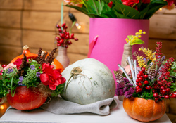 Virtual Demonstration: Floral Arranging with Supermarket Flowers for Thanksgiving